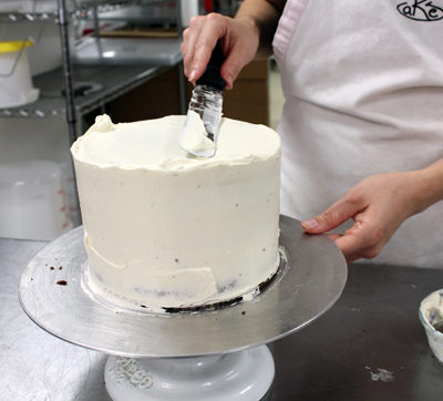 cake-decorating-pic