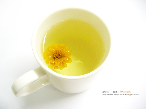 chrysanthemum-tea1