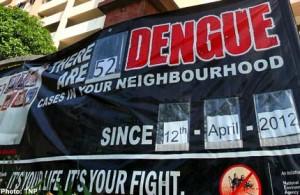 dengue-alert