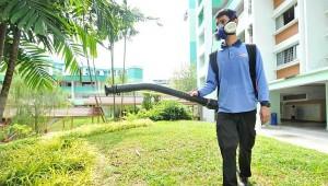 dengue-not-abating